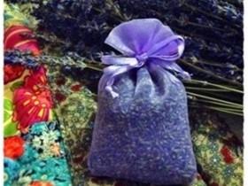 tui-thom-lavender-02