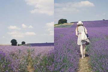 Hẹn ước mùa thu Provence, Pháp
