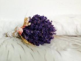 HC01-Lavender