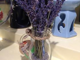 Lo-hoa-Lavender-LHLav02