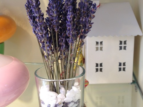 Lo-hoa-Lavender-LHLav03