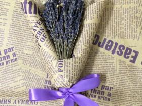 Hoa Lavender LVD05