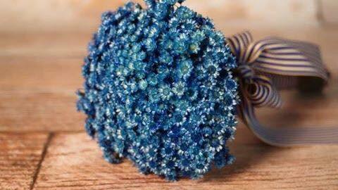 Hoa Glixia xanh