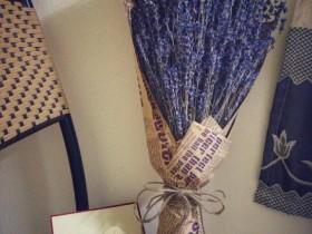 Hoa Lavender LVD09